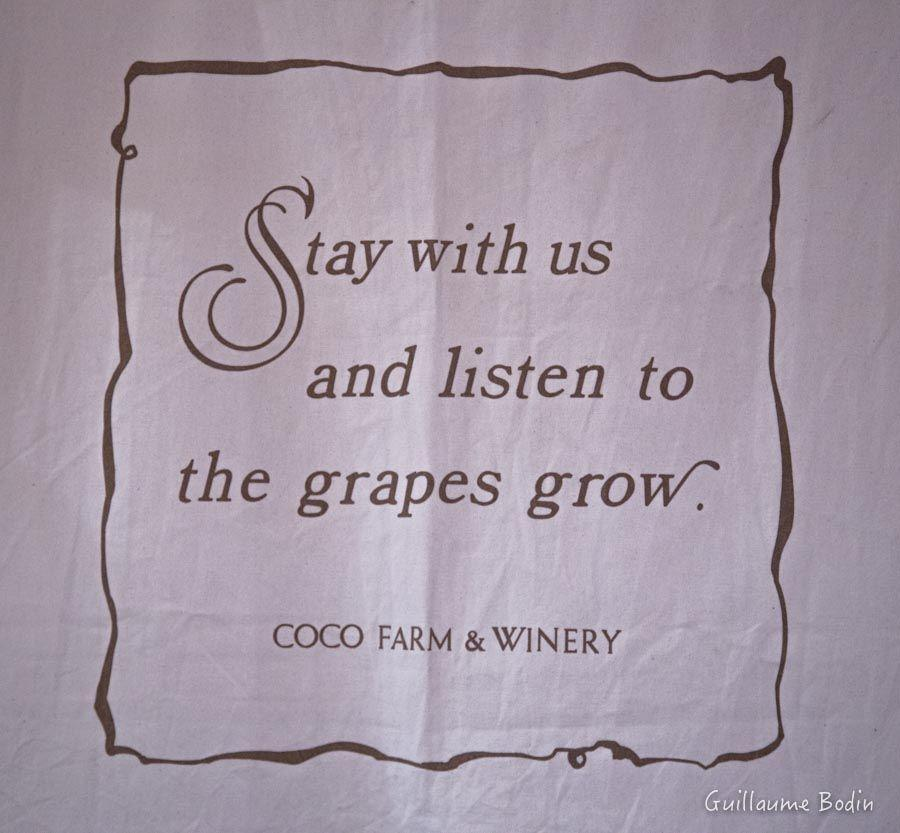 Stay with us and listen to the grapes grow. Coco Farm & Winery